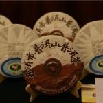 普洱 普洱山 鳳凰山 普洱茶 新聞發布會