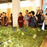考察團在正山堂學習紅茶的發源史
