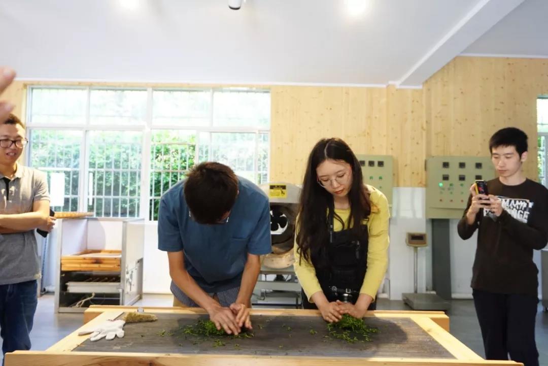 學員們體驗製茶